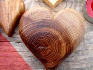 corazon de madera de olmo