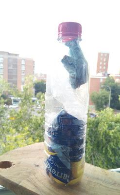 Ecoladrillo o Botella de Amor en construcción, una buena manera de reutilizar plástico y residuos sólidos